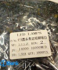 ال ای دی کلاهی سفید مهتابی 5 میلیمتر LED LAMPS