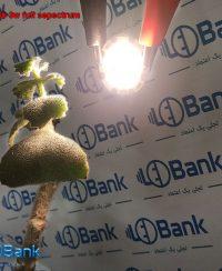 ال ای دی رشد گیاه نور روز 3 وات قطر 27 میلیمتر